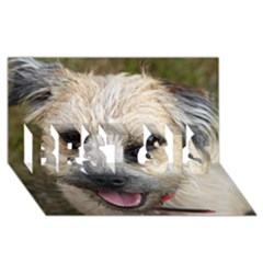 Border Terrier BEST SIS 3D Greeting Card (8x4)