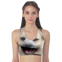 Border Terrier Sports Bra