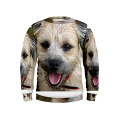 Border Terrier Boys  Sweatshirts
