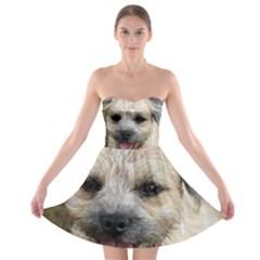 Border Terrier Strapless Bra Top Dress