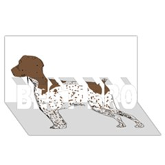 German Shorthair Pointer Silo Color BEST BRO 3D Greeting Card (8x4)