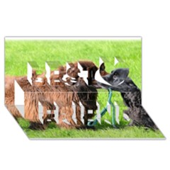 2 Newfies Best Friends 3D Greeting Card (8x4)