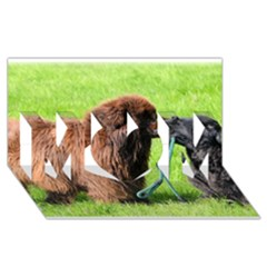 2 Newfies MOM 3D Greeting Card (8x4)