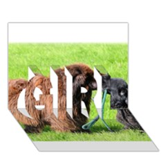 2 Newfies GIRL 3D Greeting Card (7x5)