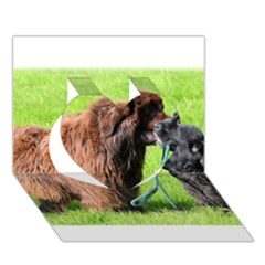 2 Newfies Heart 3D Greeting Card (7x5)