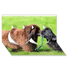 2 Newfies Twin Hearts 3D Greeting Card (8x4)