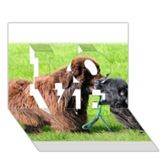 2 Newfies LOVE 3D Greeting Card (7x5)