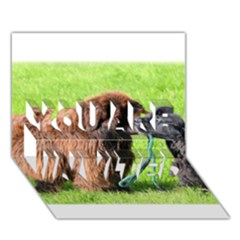 2 Newfies YOU ARE INVITED 3D Greeting Card (7x5)