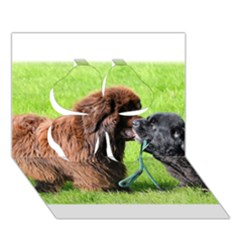 2 Newfies Clover 3D Greeting Card (7x5)