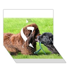 2 Newfies Ribbon 3D Greeting Card (7x5)