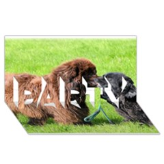 2 Newfies PARTY 3D Greeting Card (8x4)