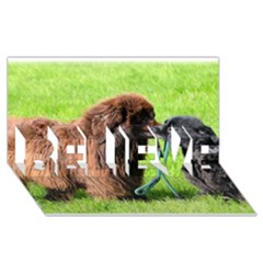 2 Newfies BELIEVE 3D Greeting Card (8x4)