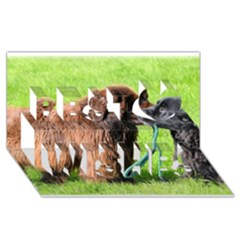 2 Newfies Best Wish 3D Greeting Card (8x4)