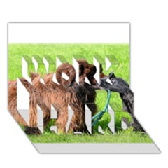 2 Newfies WORK HARD 3D Greeting Card (7x5)