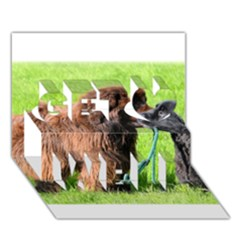 2 Newfies Get Well 3D Greeting Card (7x5)