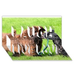 2 Newfies Laugh Live Love 3D Greeting Card (8x4)