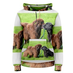2 Newfies Women s Pullover Hoodies