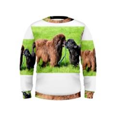2 Newfies Boys  Sweatshirts