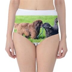 2 Newfies High-Waist Bikini Bottoms