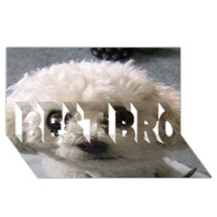 Bolognese BEST BRO 3D Greeting Card (8x4)