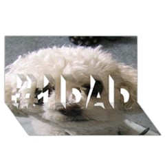 Bolognese #1 DAD 3D Greeting Card (8x4)