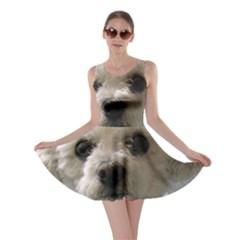 Bolognese Skater Dresses