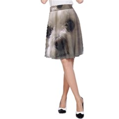 Bolognese A-Line Skirts