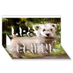 Glen Of Imaal Full wheaton Best Friends 3D Greeting Card (8x4)