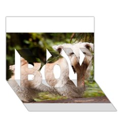 Glen Of Imaal Full wheaton BOY 3D Greeting Card (7x5)