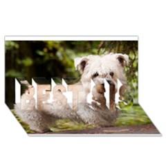 Glen Of Imaal Full wheaton BEST SIS 3D Greeting Card (8x4)
