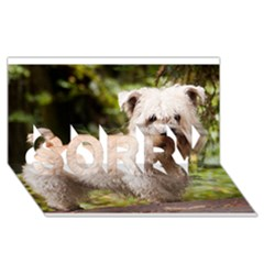 Glen Of Imaal Full Wheaton Sorry 3d Greeting Card (8x4)