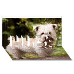 Glen Of Imaal Full wheaton HUGS 3D Greeting Card (8x4)