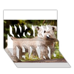 Glen Of Imaal Full wheaton WORK HARD 3D Greeting Card (7x5)