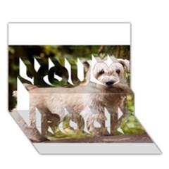 Glen Of Imaal Full wheaton You Rock 3D Greeting Card (7x5)