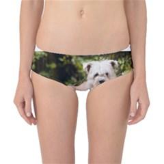 Glen Of Imaal Full wheaton Classic Bikini Bottoms