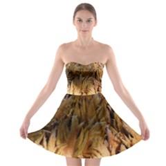 Sago Palm Strapless Bra Top Dress