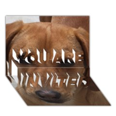 Dachshund YOU ARE INVITED 3D Greeting Card (7x5)