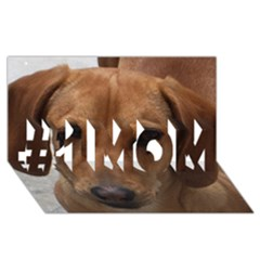 Dachshund #1 MOM 3D Greeting Cards (8x4)