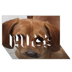 Dachshund HUGS 3D Greeting Card (8x4)