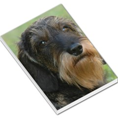 Wirehaired Dachshund Large Memo Pads