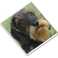 Wirehaired Dachshund Small Memo Pads