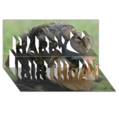 Wirehaired Dachshund Happy Birthday 3D Greeting Card (8x4)