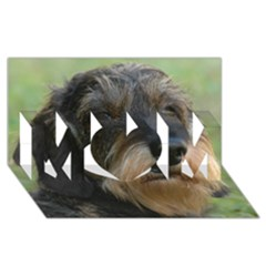 Wirehaired Dachshund MOM 3D Greeting Card (8x4)