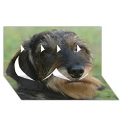 Wirehaired Dachshund Twin Hearts 3D Greeting Card (8x4)