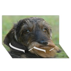 Wirehaired Dachshund Twin Heart Bottom 3D Greeting Card (8x4)