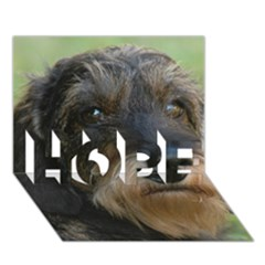Wirehaired Dachshund HOPE 3D Greeting Card (7x5)