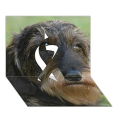 Wirehaired Dachshund Ribbon 3D Greeting Card (7x5)