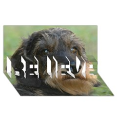Wirehaired Dachshund BELIEVE 3D Greeting Card (8x4)
