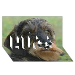Wirehaired Dachshund Hugs 3d Greeting Card (8x4)