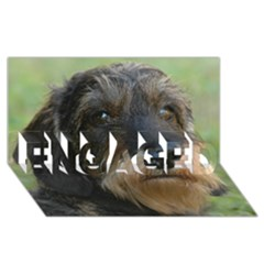 Wirehaired Dachshund ENGAGED 3D Greeting Card (8x4)